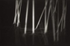 Laughing Reeds 7