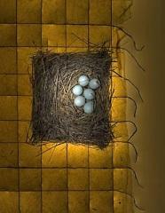Engineered Nest