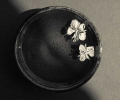 Petals and Japanese Bowl