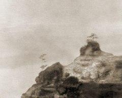 Pacific Cliffs